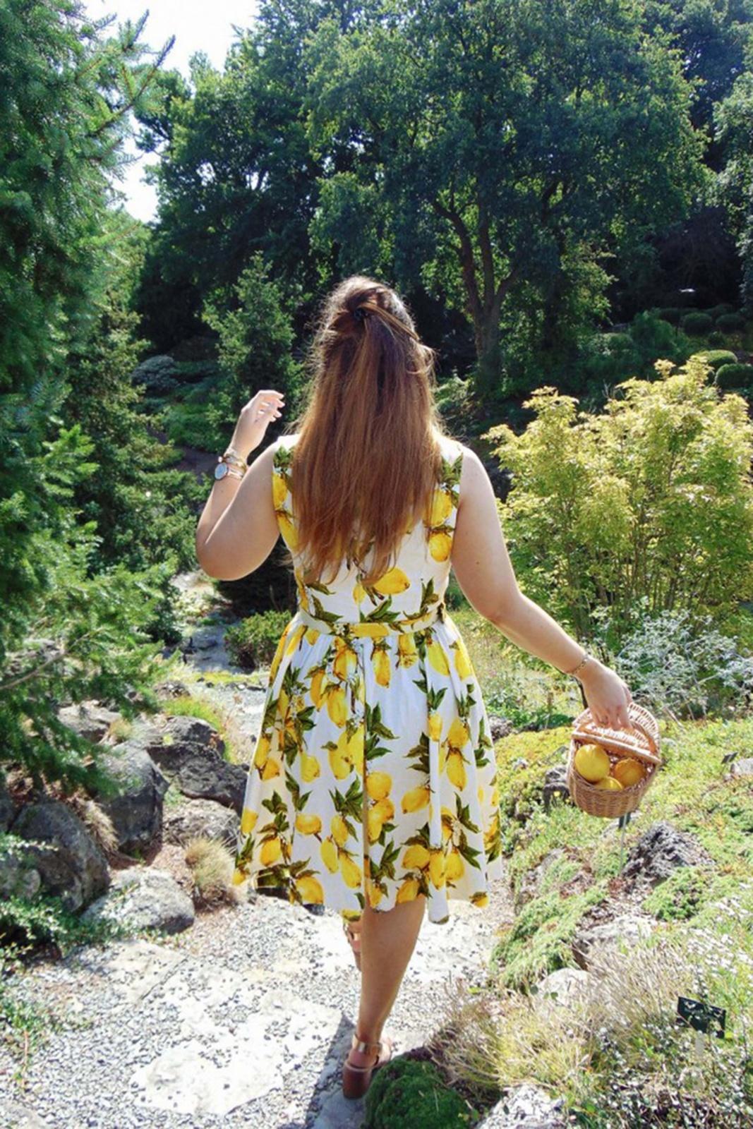 c8152bb614b32d WLindy Bop Audrey Lemon Print Swing Dress 102 59 21213 20170301 0007webs