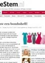BN De stem nl interview