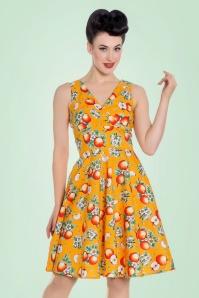 50s Somerset Apples Swing Dress in Orange