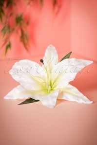 Lady Lucks Botique Ava XL Hairflower 200 50 21286 04252017 021W