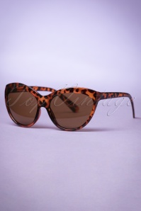 So Retro Big Cat Sunglasses Tortoise 260 79 22102 20170505 0014w