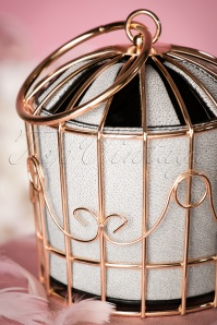 Victorias Gem Birdcage Bag in White 212 59 23027 04032017 029W