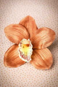 Lady Luck's Boutique Ginger Copper Single Orchid Hairflower 200 70 23836 20171121 0011w