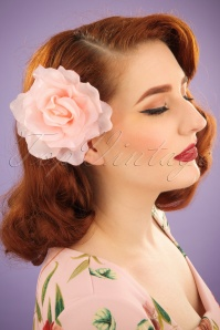 Darling Divine Rose Hairflower 200 22 24694 31032014 001W