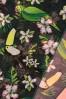 Collectif Clothing Tropical Bird Bandana 208 49 24376 15112017 004