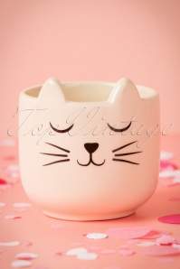 Sass & Belle Cat's Wiskers Mini Planter 290 59 25205 26042018 003W