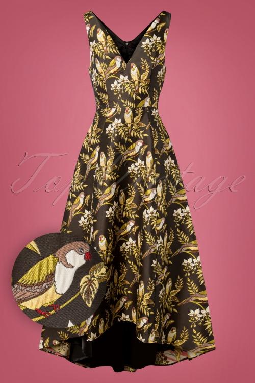 Bright and Beautiful Jacquard Isabella Bird Dress 108 79 25501 20181112 010W1