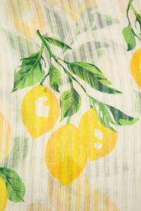Amici 28018 Lemon Shawl 20190116 009
