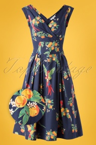 Emily and Fin 50s Florence Playful Parrots Dress in Navy