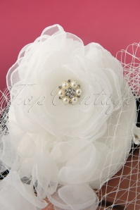 Lovely 28953 Audrey Birdcage Fascinator 20190612 003