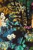 Smashed Lemon 30204 Black Multi Floral Dress 20190906 003