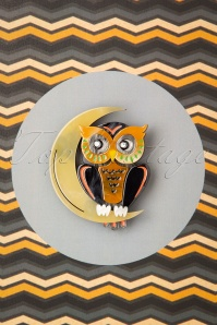 Erstwilder 60s A Moon With A View Owl Brooch