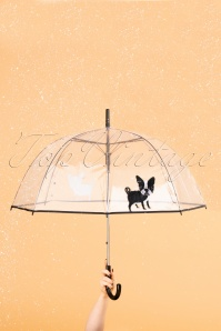 So Rainy 31382 Umbrella Dog20191217 010 W