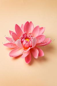Water Lily Hair Clip en Rose
