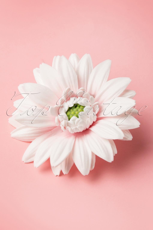 Gebera White Hair Flower