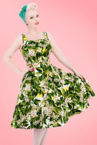 50s Jessy Floral Swing Dress in Green