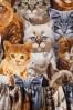Retrolicious Cat Print Semi Swing Dress 102 79 10511 20160908 0005