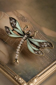 How To Train Your Dragonfly Brooch Années 20